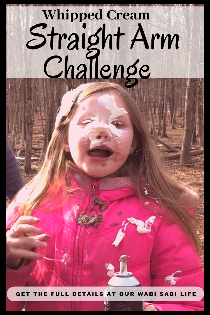 Have you heard of the straight arm challenge? Wondering what it is? How can the straight arm challenge create silly fun with your family? Let me tell you.