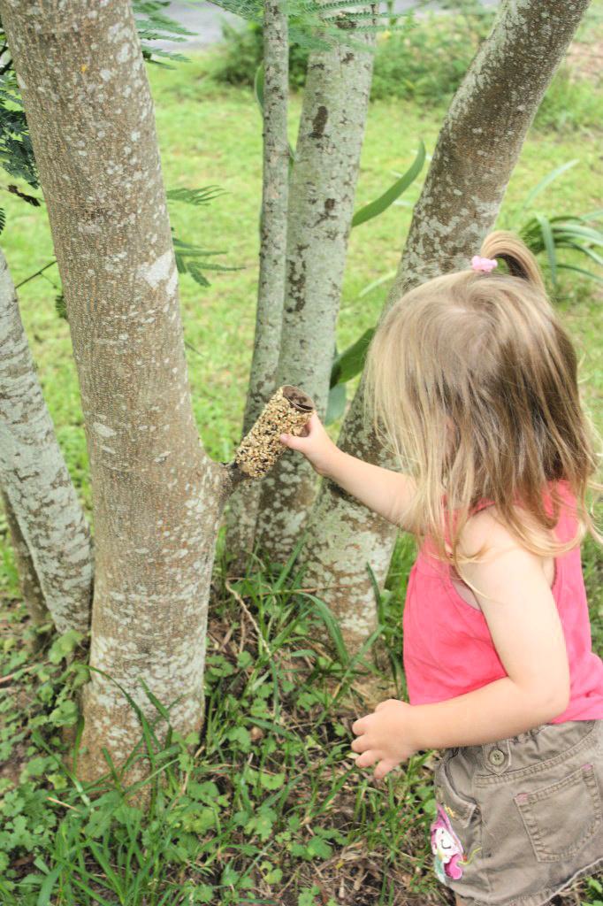 little girl placing bird feeder