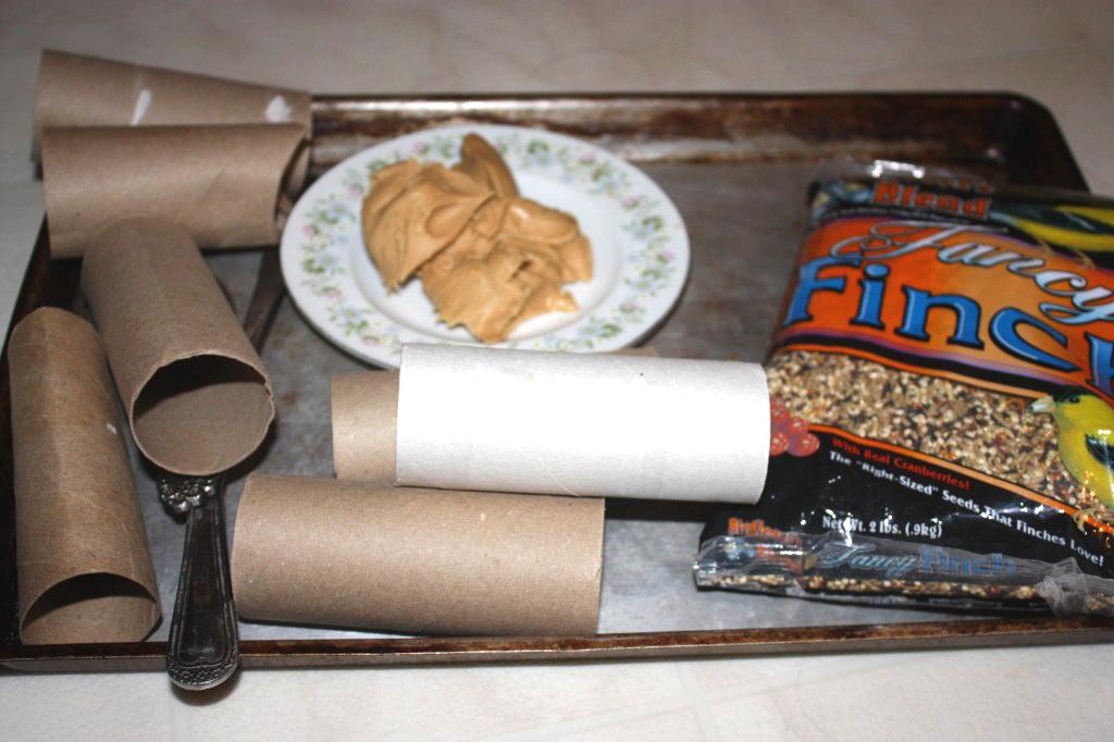 supplies for bird feeders