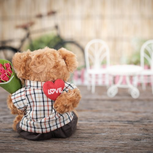 bear with a heart pillow and flowers