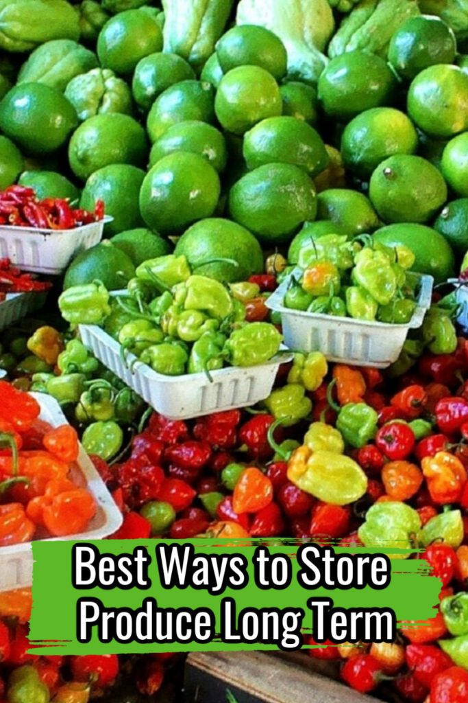 Best Ways to Store Produce Long Term