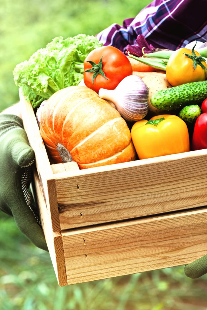 Eating Local and Seasonal Year Round With Old Fashioned Food Preservation Methods