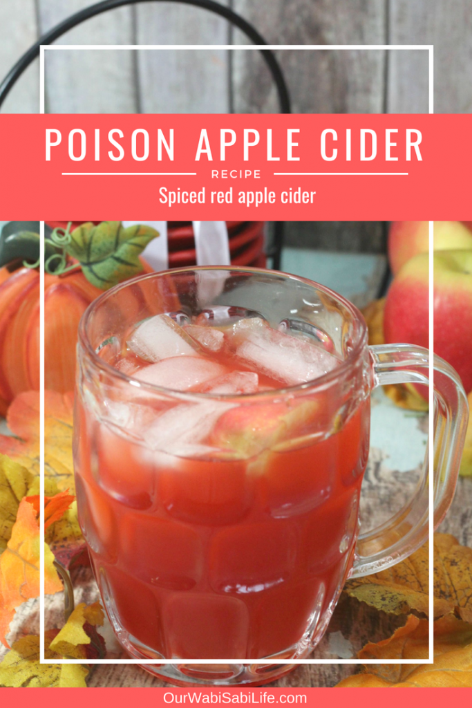 Poison Apple Cider Recipe (Spiced Homemade Apple Cider)