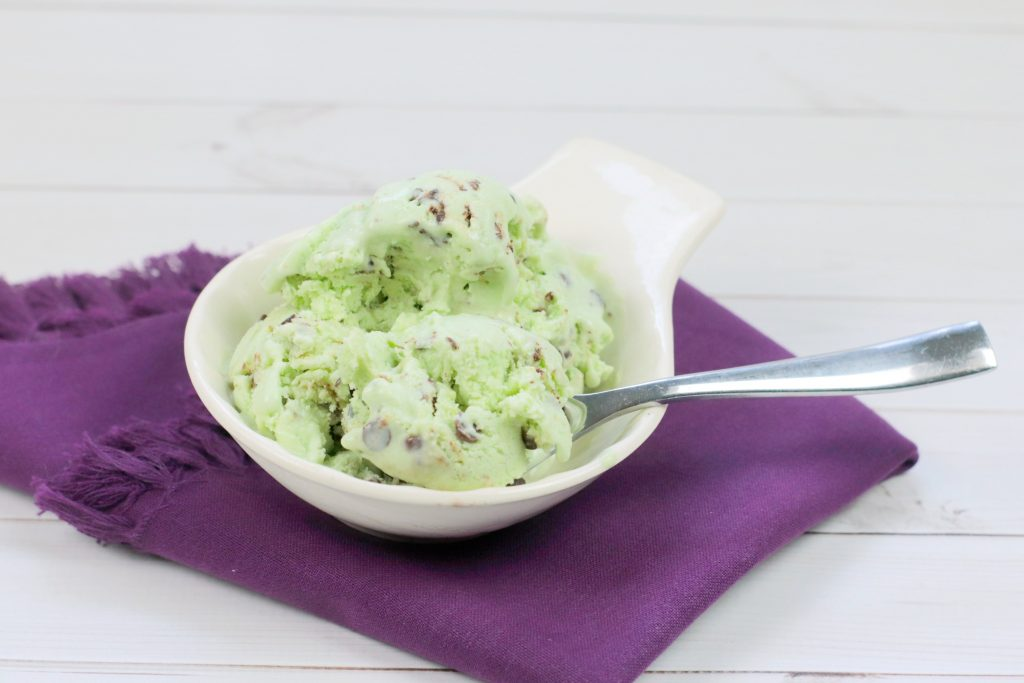 Easy WW No Churn Chocolate Mint Ice Cream Recipe