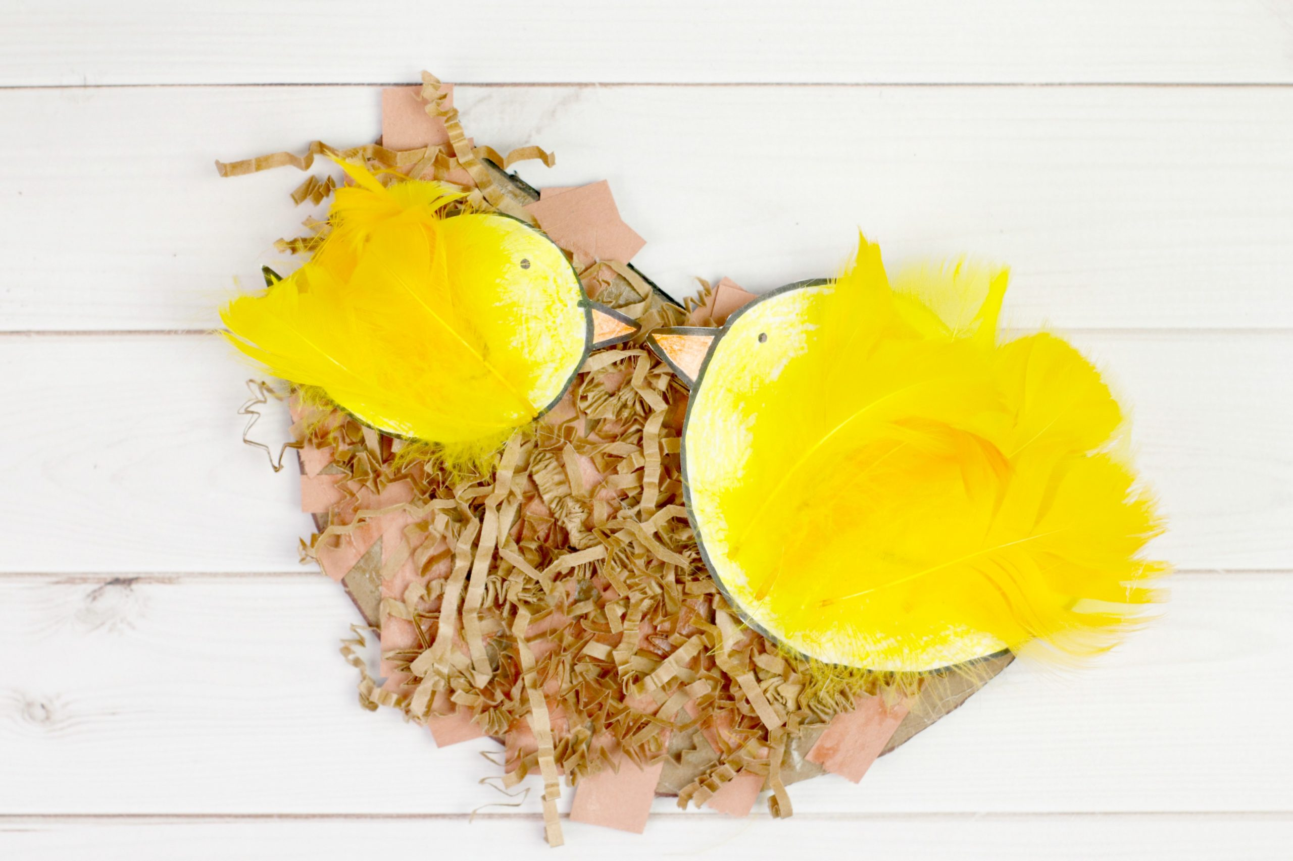 Mama and Baby Bird Nest Craft on a white table.