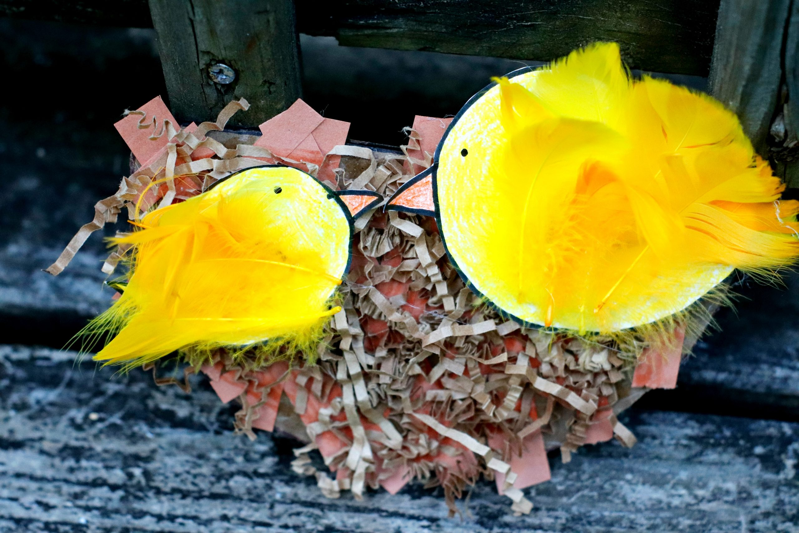 Mama and Baby Bird Nest Craft on a chair.